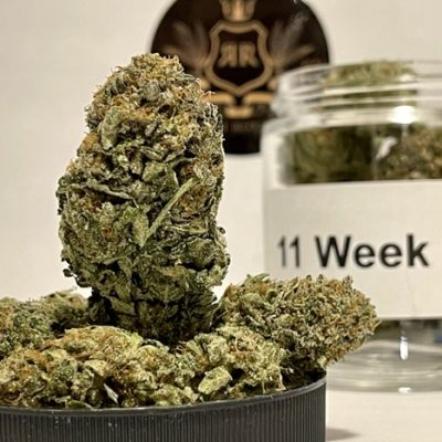*NEW* 11 Week Pink AAAA+ by CE